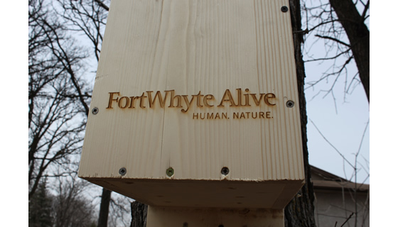 Signage - Fort Whyte Alive Wood Duck Box